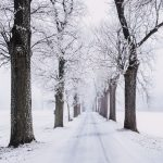 Sådan undgår du en vinterdepression